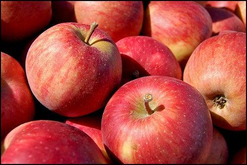 """Zwei Apfel am Tag sind die ideale """"Dosis"""" für die Gesundheit."""