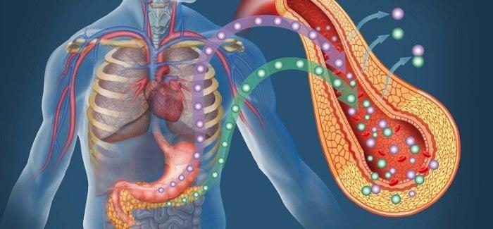 Wie man Diabetes erkennt und heilt