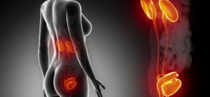 Das Zurückhalten des Urins kann zu Problemen führen
