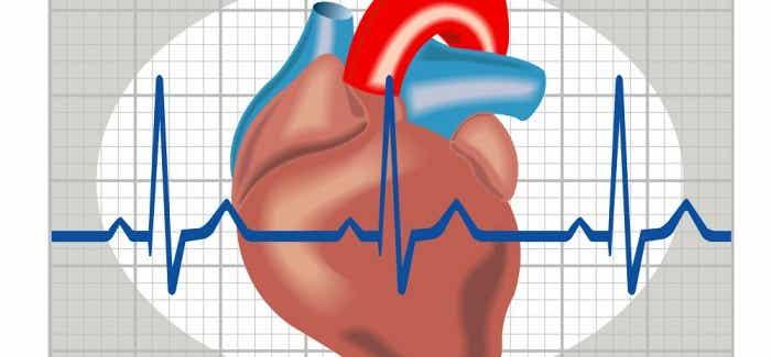 Weist du, wie du Herzrasen erkennen und vorbeugen kannst?