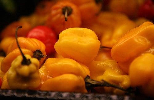 Die sechs besten Lebensmittel zum Abnehmen