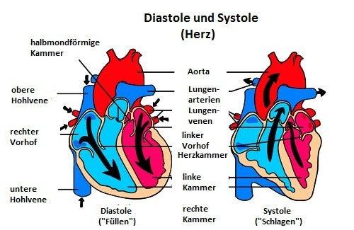 Was sind Herzgeräusche?