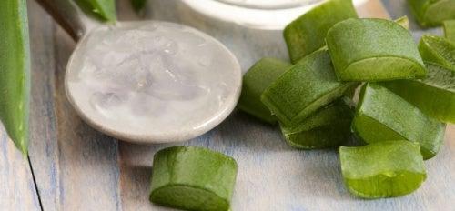 Natürliche Seife aus Aloe Vera und Honig