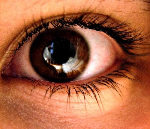 Pupille und braune Iris