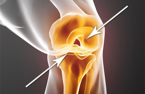 Verletzte Knorpel – Schnelle Regeneration