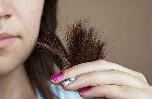 Haarpflege feines bruchiges haar
