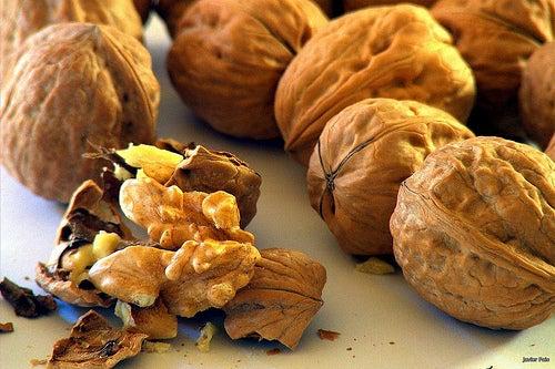 Nüsse halten unser Gehirn fit