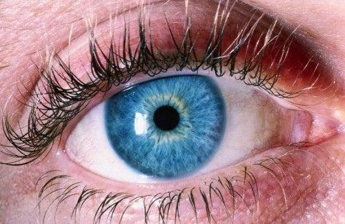 Wie erkennt man Alzheimer an den Augen?