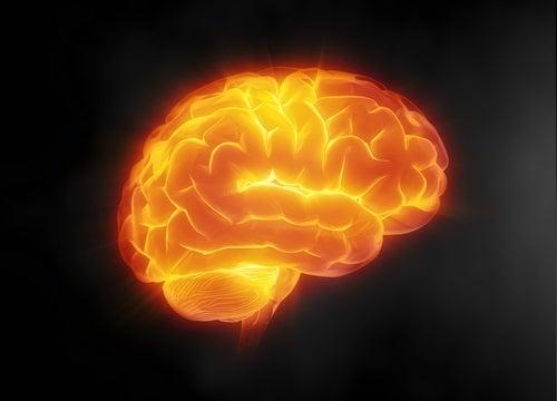 Gehirn schonen