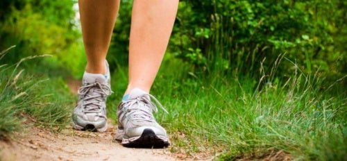Die besten Bewegungsformen für unsere Gesundheit