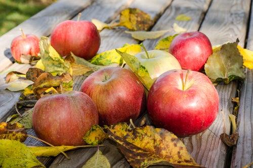 Welche Apfelsorte eignet sich für den kaliumreichen Shake am besten?