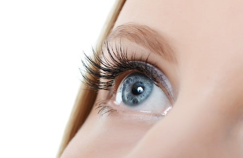 Wie kann das Wachstum der Wimpern beschleunigt werden?