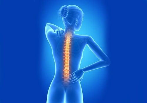 Tipps Rückenschmerzen