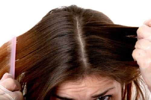 Haarpflege mit Apfelessig