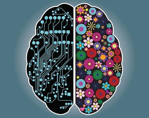Sind Sie eine rationelle oder intuitive Person?
