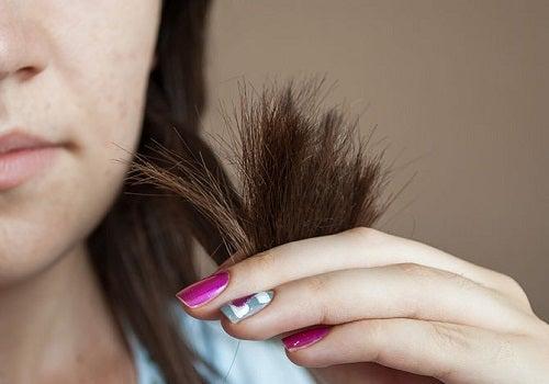 Haare -Spitzen