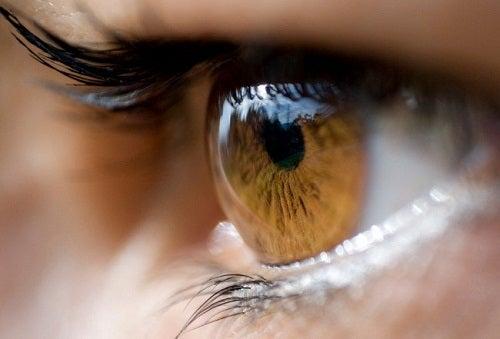 Was verrät Ihre Augenfarbe?