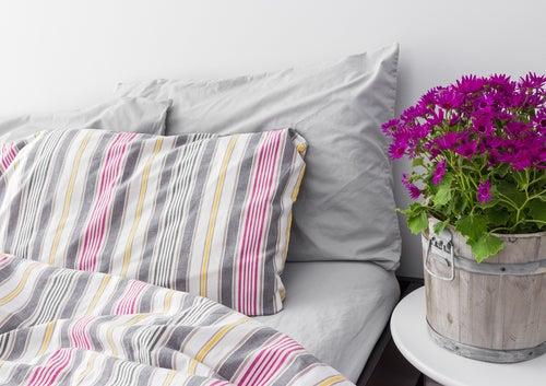 Tipps für ein harmonisches Schlafzimmer - Besser Gesund Leben