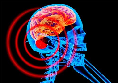 Welche Auswirkungen haben elektromagnetische Felder?