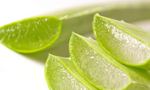 Mit der Ananas-Aloe-Diät gesund abnehmen