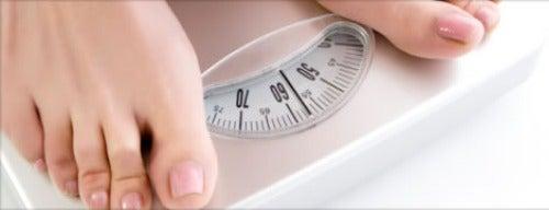 idealgewicht1