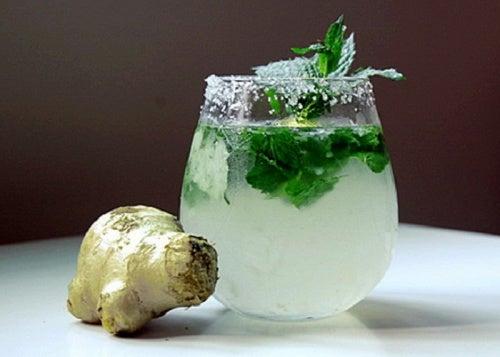 Leckerer Saft aus Ingwer, Zitrone, Minze und Gurke