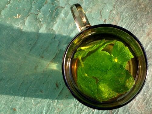 Ingwer mit Minze als Tee