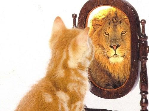 selbstwertgefühl