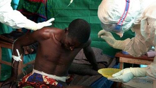 Wissenswertes über Ebola