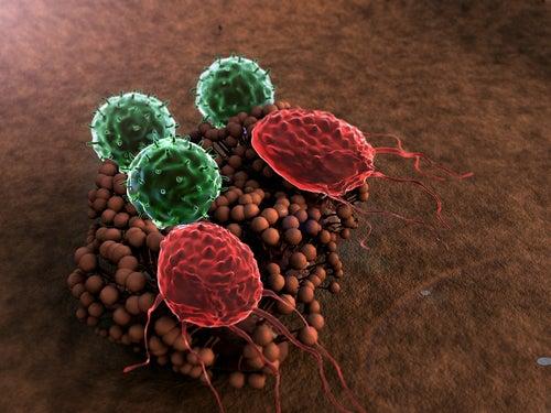 8 Dinge, die das Immunsystem zerstören