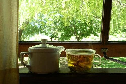 Tee aus amerikanischer Ulme