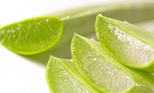 Aloe-vera gegen Blutergüsse
