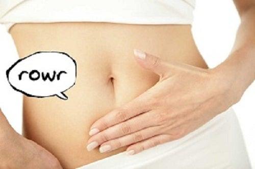 Warum knurrt uns eigentlich der Magen?
