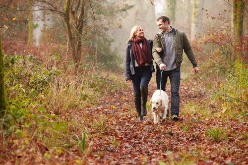 Ein Spaziergang kann verhindern, dass du nach dem Essen müde wirst