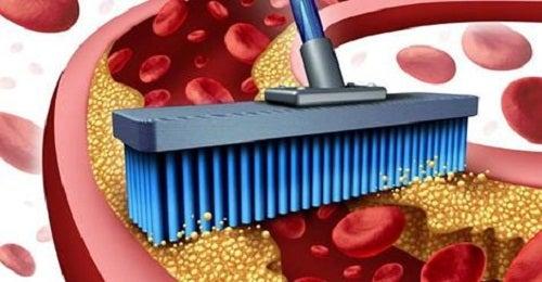 10 Nahrungsmittel zur Reinigung der Arterien