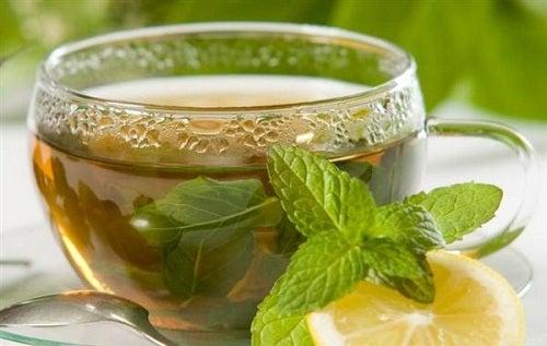 Tees und Aufgüsse: Eigenschaften und Zubereitung