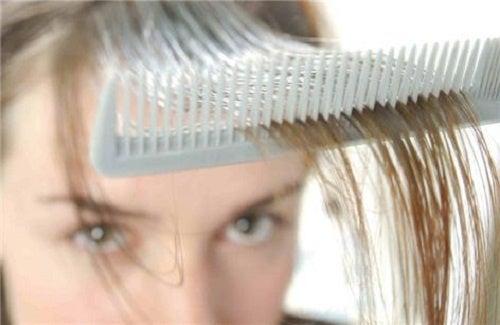 3 Kräuterheilmittel gegen Haarausfall