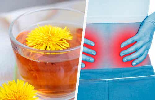 5 einfache Hausmittel für eine Nierenreinigung