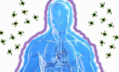 Menschliches Immunsystem