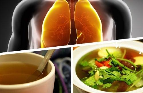 Säfte zur Entgiftung der Lunge