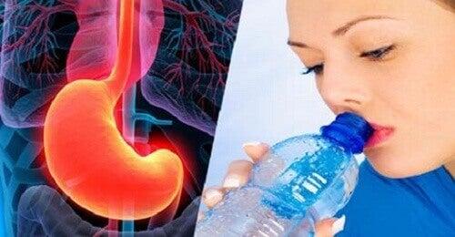 4 Gläser Wasser auf nüchternen Magen: gesundheitliche Vorteile