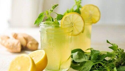 Drink aus Ingwer, Zitrone und Minze