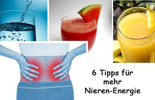 6 Tipps für mehr Nieren-Energie