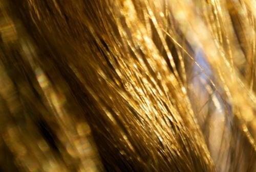 4 einfache Tipps, die deine Haare jugendlich strahlen lassen