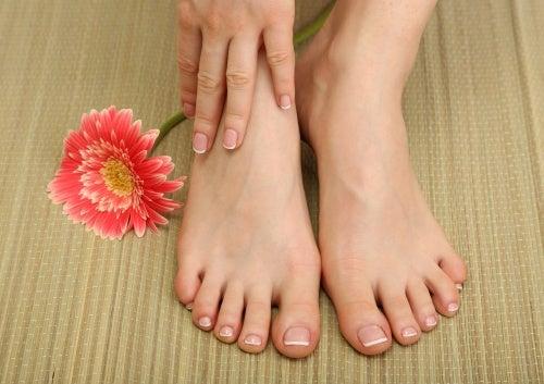 zwei Füße und Hand mit Blume