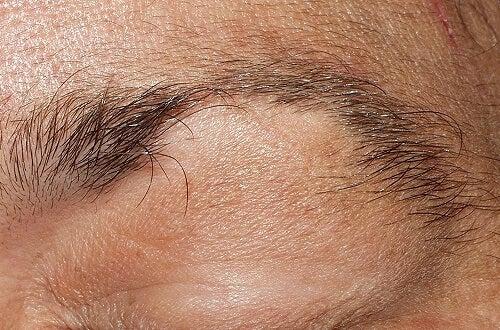 schöne Augenbrauen brauchen Pflege