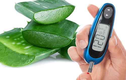 Aloe Vera gegen Diabetes Typ II