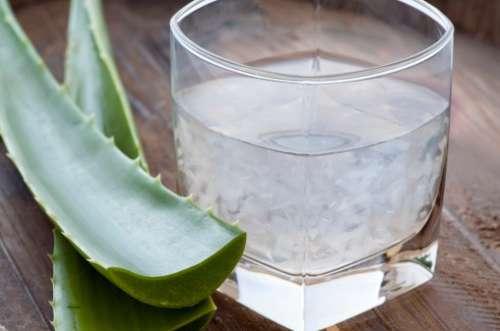 3 Kräutertees für die Darmreinigung: Aloe Vera-Lindenblüten-Tee