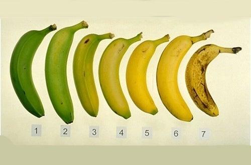 Sind grüne oder reife Bananen gesünder?