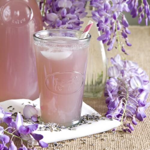 ausgezeichnete Kräutertees mit Lavendel